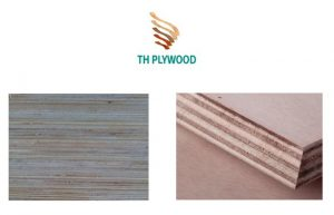cut edge E0 packing plywood