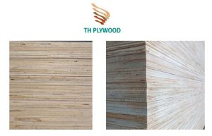 cut edge E1 packing plywood