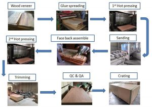 commercial plywood process