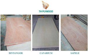 sanding plywood type