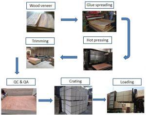 plywood grade ab process