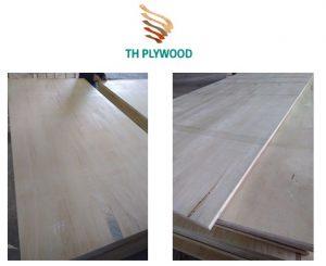 plywood ab white face back